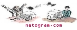 Welcome to netogram.com